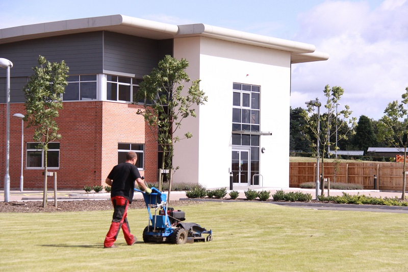 3 Best Tips For Effectively Caring For Your Business Grounds