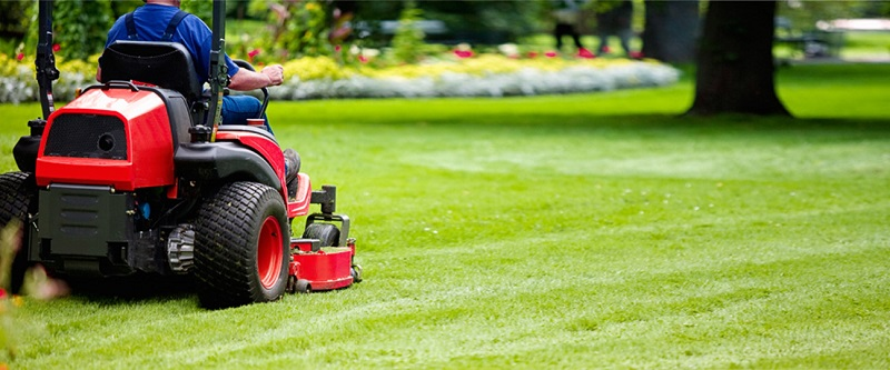 Four benefits to hiring a professional grounds maintenance company