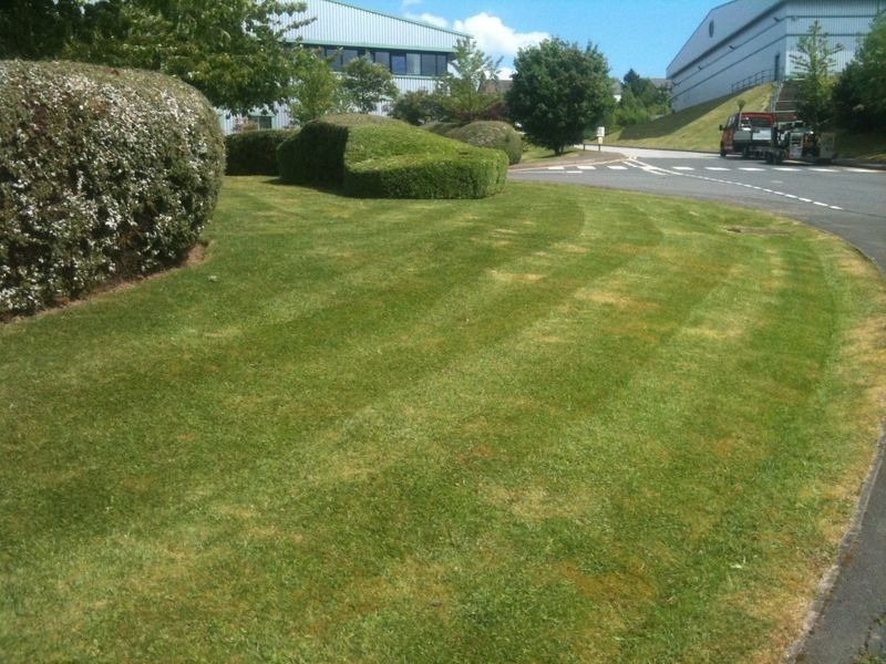 How Much Of Your Budget Should Be Set Aside For Grounds Maintenance