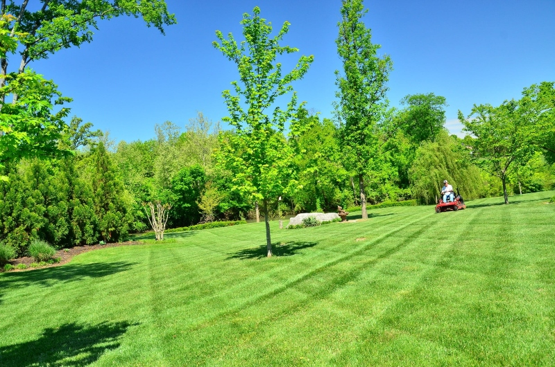 commercial-grounds-maintenance-and-garden-services-spring-nottingham