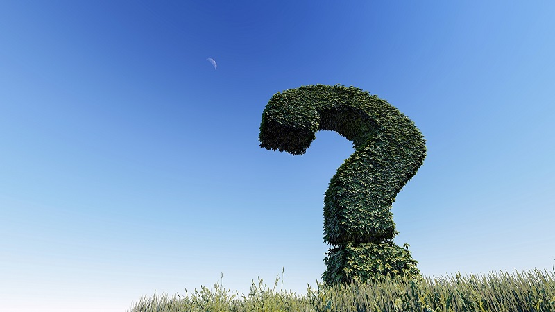 5 things to ask a ground maintenance company before hiring them